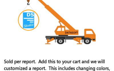 Report Customization Service